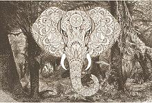 DD118125 ElephantHead2 Atelier 47 fototapete tiere