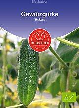 De Bolster Bio-Samen knackige Gewürzgurke,