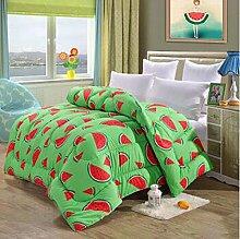 Decke Warm Winter ist verdickt durch die Core Quilt Quilts Quilts Doppelzimmer Single mit Schwarz und Weiß Bettwäsche ( farbe : B6 , größe : 180*220cm/5 Pounds )