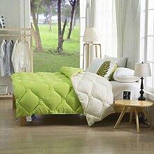 Decke Warm Winter ist verdickt durch die Core Quilt Quilts Quilts Doppelzimmer Single mit Schwarz und Weiß Bettwäsche ( farbe : B3 , größe : 150*200cm/4 Pounds )