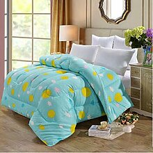 Decke Warm Winter ist verdickt durch die Core Quilt Quilts Quilts Doppelzimmer Single mit Schwarz und Weiß Bettwäsche ( farbe : B1 , größe : 150*200cm/4 Pounds )