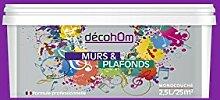 decohom 638097512849Wandmalerei Monoschicht matt 2,5l Jazz viole