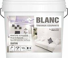 decohom 7111305829234gängigen Malerarbeiten Wände und Decken, Weiß, 10l