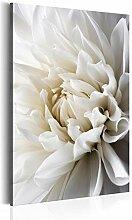 decomonkey Bilder Blumen 60x90 cm 1 Teilig