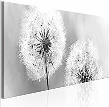 decomonkey Bilder Blumen Pusteblume 135x45 cm 1