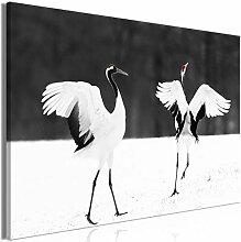 decomonkey Bilder Vogel 120x80 cm 1 Teilig