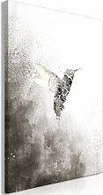 decomonkey Bilder Vogel 40x60 cm 1 Teilig