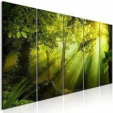 decomonkey Bilder Wald 200x80 cm 5 Teilig
