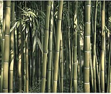 decomonkey Fototapete Bambus Natur 300x210 cm XXL