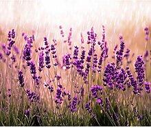 decomonkey Fototapete Blumen Lavendel 245x175 cm