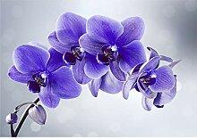 decomonkey Fototapete Blumen Orchidee 250x175 cm