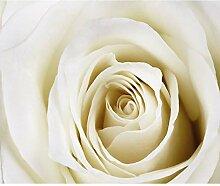 decomonkey Fototapete Blumen Rose 100x170 cm