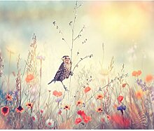 decomonkey Fototapete Blumen Vogel 300x210 cm