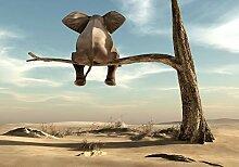 decomonkey Fototapete für Kinder Elefant 100x70
