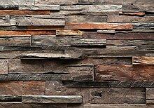 decomonkey Fototapete Holz v300x210 cm Tapete