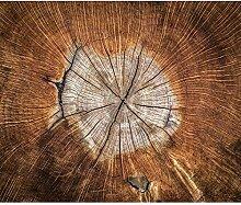 decomonkey Fototapete Holzoptik 300x210 cm XXL