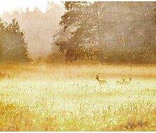decomonkey Fototapete Landschaft Natur 200x140 cm