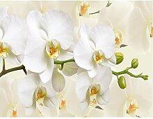 decomonkey Fototapete Orchidee 250x175 cm Wandbild