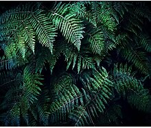 decomonkey Fototapete selbstklebend Palmen 245x175