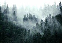 decomonkey Fototapete selbstklebend Wald 196x140