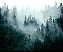 decomonkey Fototapete selbstklebend Wald 343x256
