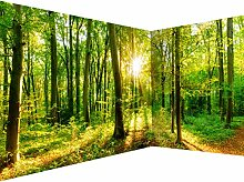 decomonkey Fototapete selbstklebend Wald 539x250