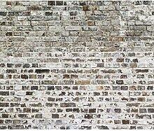decomonkey Fototapete Steinwand Ziegel 350x256 cm