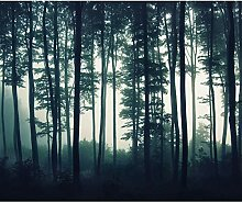decomonkey Fototapete Wald 250x175 cm XL Tapete