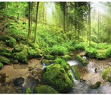 decomonkey Fototapete Wald 300x210 cm XL Tapete