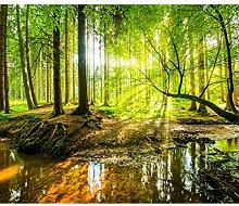 decomonkey Fototapete Wald 300x210 cm XXL Tapete