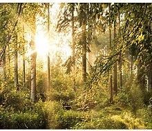 decomonkey Fototapete Wald 400x280 cm XL Tapete