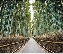 decomonkey Fototapete Wald Bambus 250x175 cm XL