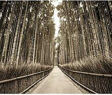 decomonkey Fototapete Wald Bambus 300x210 cm XXL