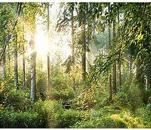 decomonkey Fototapete Wald grün 350x256 cm Tapete