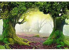 decomonkey Fototapete Wald Landschaft 250x175 cm