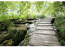 decomonkey Fototapete Wald Natur 350x256 cm XL
