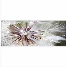 decorwelt Glasbild 125x50 XL Pusteblume Grau