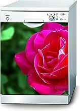 Decusto Pink Rose Aufkleber für Geschirrspüler