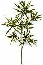 Deko Dracaena Reflexa Zweig, gelb-grün, 70 cm - Kunstzweig / Künstliche Blätter - artplants