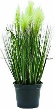 Deko Federgras, getopft, Blütenrispen weiß, 60 cm - Künstliches Gras / Deko Pflanze - artplants