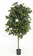 Deko Kamelien Baum mit 1670 Blättern, 170 Blüten, weiß, 170 cm - Kunstblume Kamelie / Kunstbaum - artplants