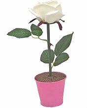 Deko LED Rose weiß pink beleuchtet Batterie