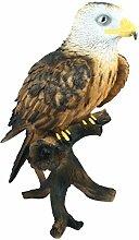 Dekofigur Weißkopfseeadler Greifvogel Höhe 50 cm Tierfigur Gartenfigur Vogeldeko Gartendeko