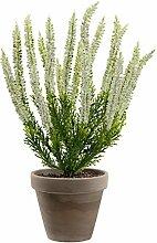 Dekoflower - Künstliche Erika Pflanze creme 34 cm im Tontopf