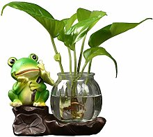 Dekoration Kreatives Grün Wasser Hydrokultur