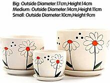 Dekorative Design Keramikplatten Pflanze Blume Pflanzer Töpfe,Pflanzen Container Sind Perfekt Zubehör Für Ihre Home