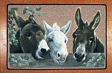 Dekorative Fußmatte - Esel / The Amigos