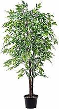 DekoWoerner Ficus Benjamini gr/weiß 120cm
