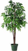 DekoWoerner Ficus Benjamini grün 120cm