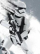 Delester Design 2755VEA Tapete Star Wars Episode VII Das Erwachen der Macht, 2Abschnitte, Mehrfarbig, 206x 275cm